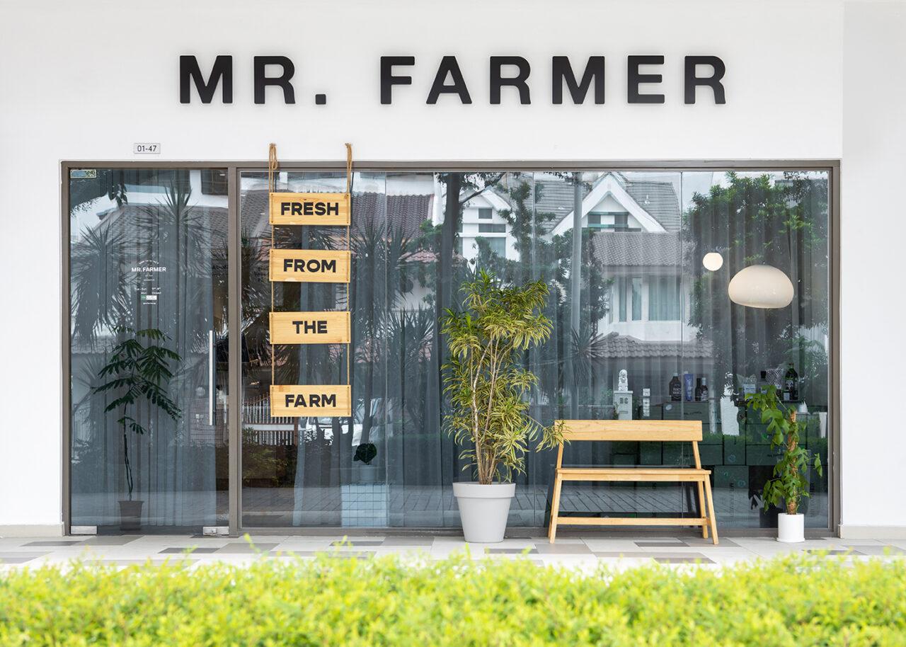 Ascend Design Mr Farmer10